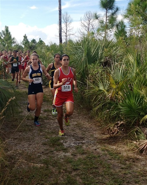 Pace men's, women's cross country teams participate in 5K